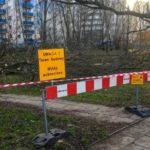 Wycinka lasów pod budowę obwodnicy na warszawkim Ursynowie