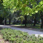 Zielony Piastów