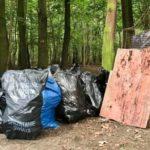 Las Kabacki posprzątany